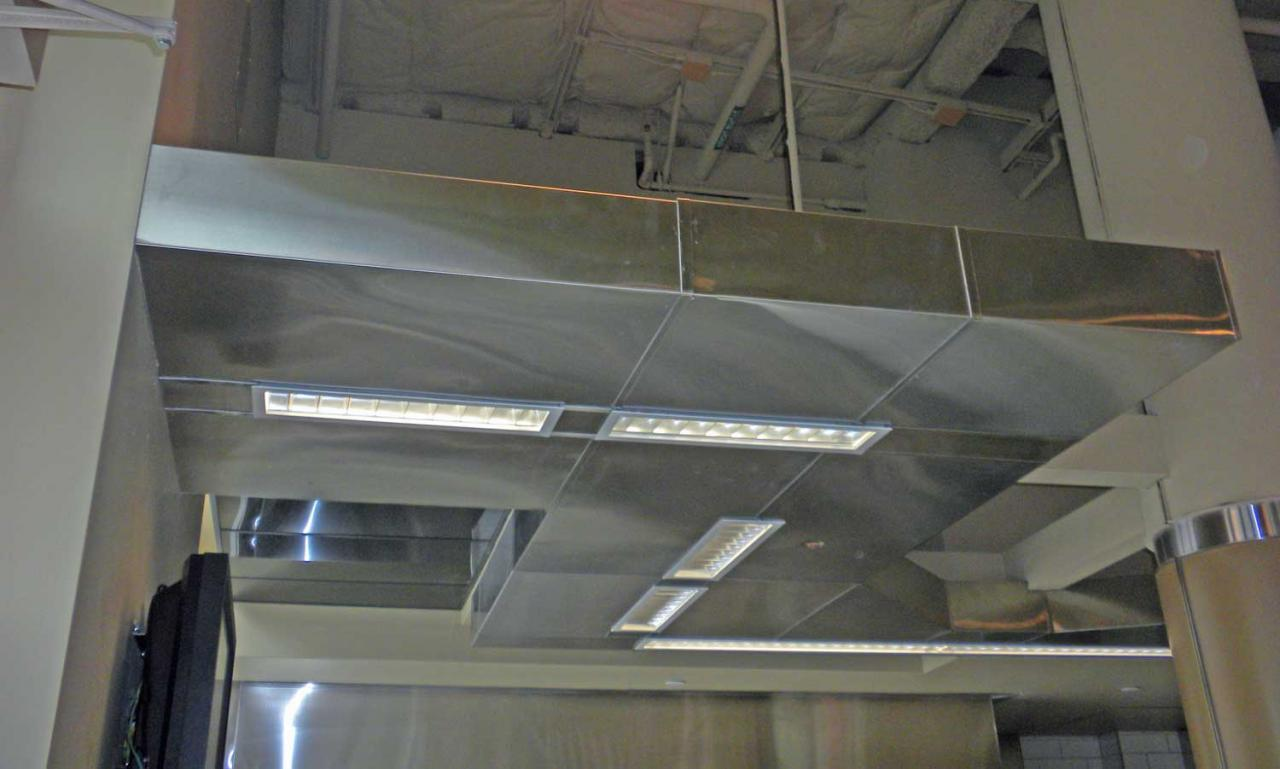 Custom design iron works inc claddings for Drop ceiling images